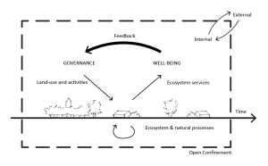 social feedback model_17_06